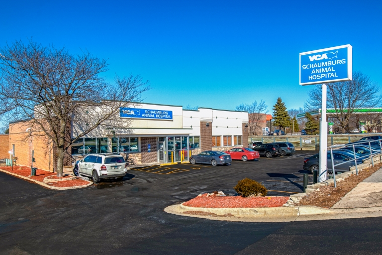 SIG Broker Closes First Deal by Bringing in Multiple Offers on Illinois Retail Pet Store Property
