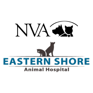 NVA – Eastern Shore Animal Hospital | Painter, VA
