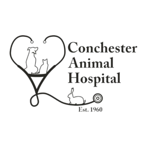 Conchester Animal Hospital | Boothwyn, PA